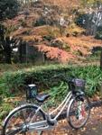 Tour de Bicicleta Japão