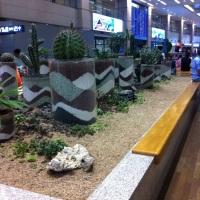 Um dia no Aeroporto da Coréia do Sul