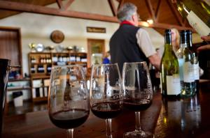 vinhos australia hunter valley