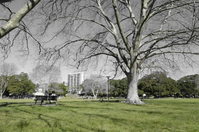 parques de sydney