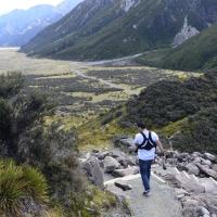 Glacial na Nova Zelândia