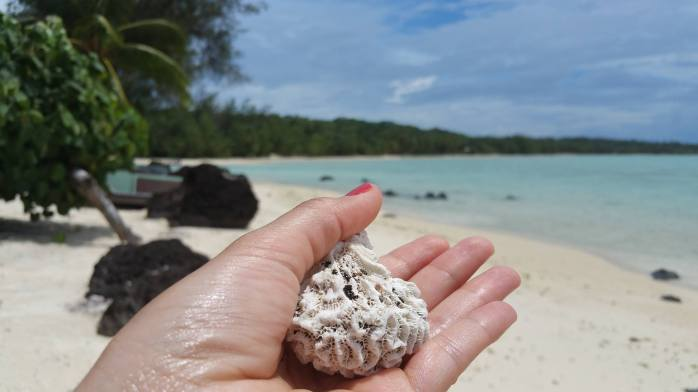 praia cook island dicas