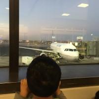 Passagem aérea barata na Australia